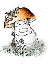 Сказка про грибы «Боровик, лисички и опята»