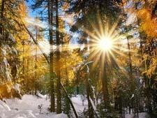 Стихи о весне короткие и красивые