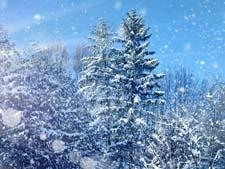 Стихи о зиме Блока