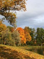 Стихи про осень С. Дрожжина