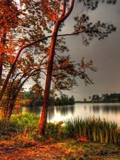 Стихи Б.Пастернака про осень