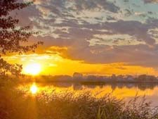 Стихи Сурикова про лето