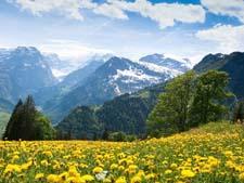 Рассказ о красоте гор детям