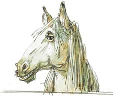 """""""Очень умная лошадь"""" М.Зощенко. Слушать"""