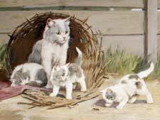 Как заботится о потомстве кошка