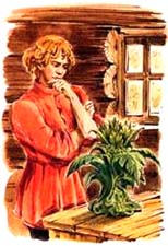 картинки каменный цветок из сказки