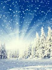 Стихи «Зима пришла»
