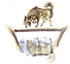 Анализ басни Л.Н.Толстого «Собака и ее тень»