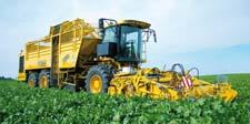 Доклад на тему «Растениеводство»