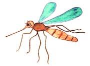 Сказка на ночь про комариху Егозу. Читать и слушать