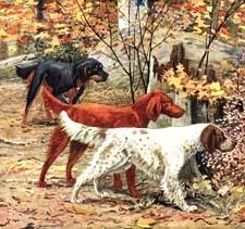 Викторина «Год Собаки»