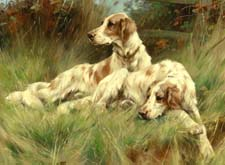 Викторина про собак