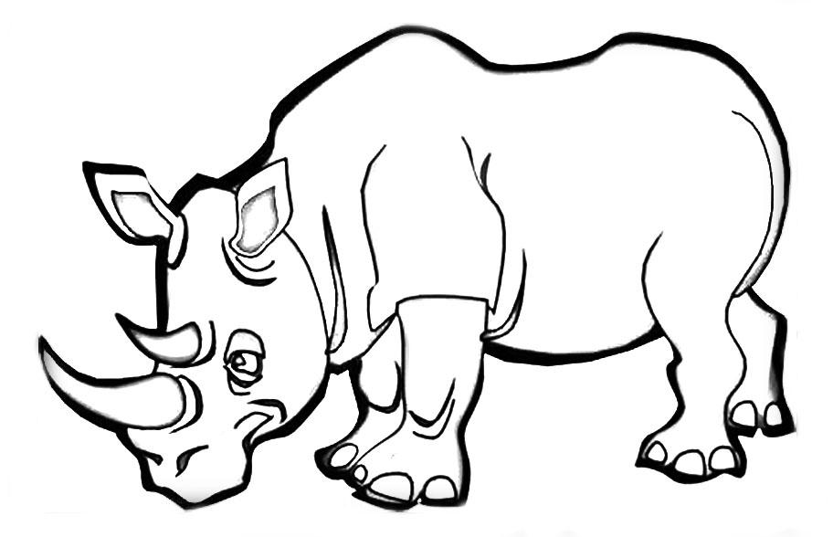 Носорог раскраски для детей