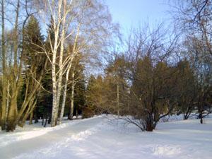 Рассказ о зиме детям