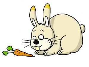 Стихи про морковь