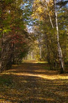 Природа осенью. Стихи