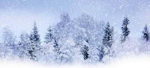 """Рассказ """"Снежный день"""""""