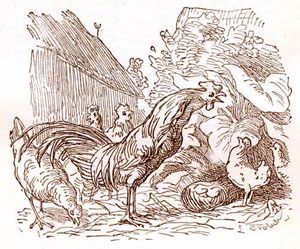 Басня про неосторожного Петуха