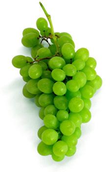 Поговорка про винограде