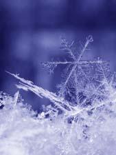 Весёлые стихи о зиме