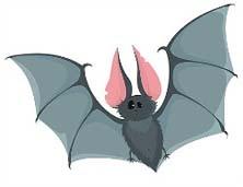 Сказка «Почему летучая мышь летает только ночью?» Слушать