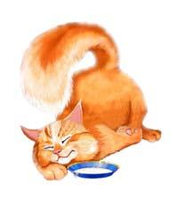 Сказка на ночь «Сказка Рыжего кота». Читать и слушать