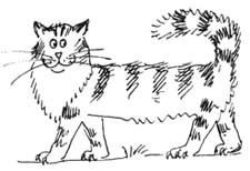 Сказка про кота собственного сочинения