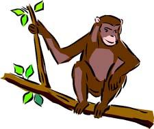 Короткая сказка про обезьяну
