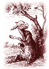 Сочиняем басню про осла и соловья с моралью