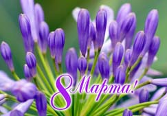Поздравление женщинам на 8 Марта от мужчин