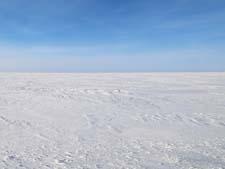 Стихи о зиме Аполлона Коринфского